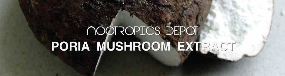 Poria Cocos Mushroom
