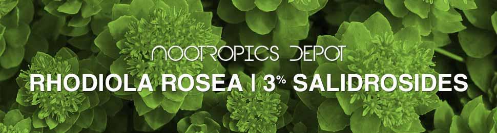 Buy Rhodiola Rosea Powder