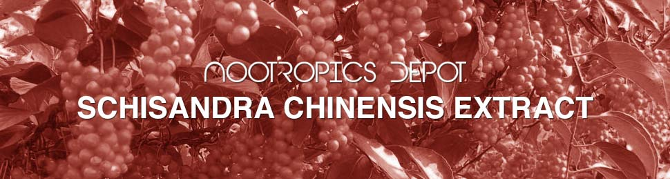 Schisandra Chinensis Powder