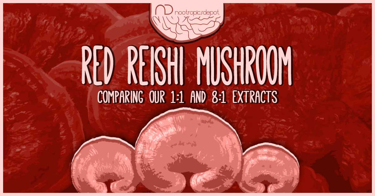 Which is the Best Red Reishi Mushroom Extract for you?