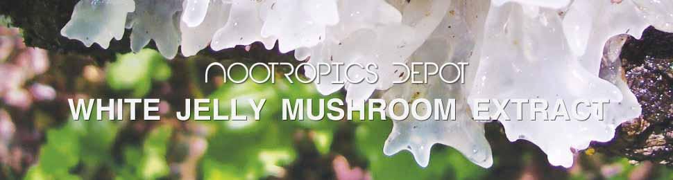 White Jelly Mushroom