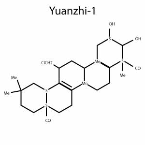 Yuanzhi-1 Structure
