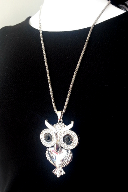Elegant Silver Owl Necklace Set with Earrings!
