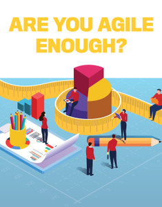 Are you agile enough (available for immediate download)