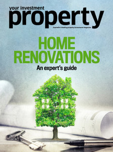Home Renovations: An expert's guide (available for immediate download)