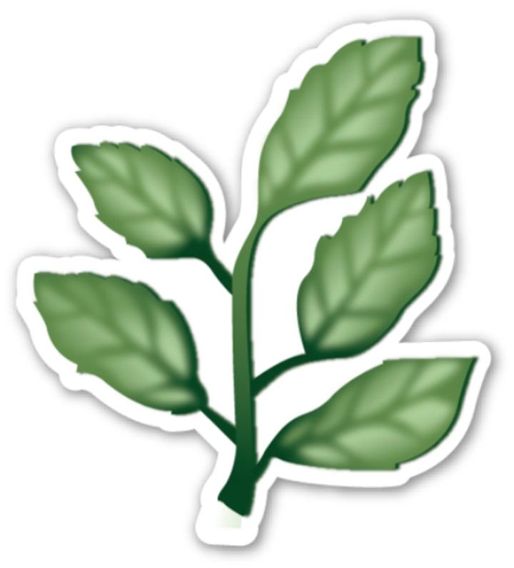 herb.jpg