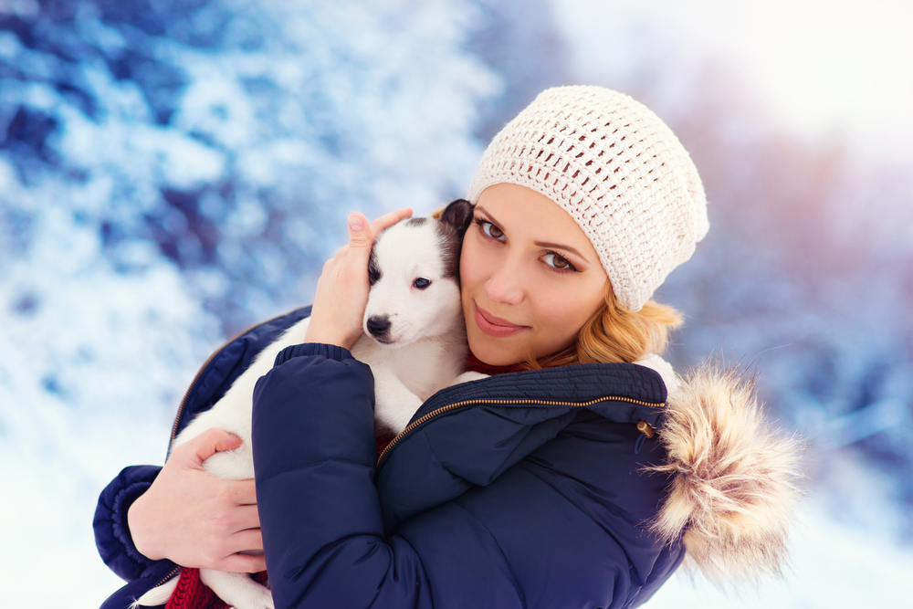 Top Tips To Protect Your Pets This Winter Eheat Inc