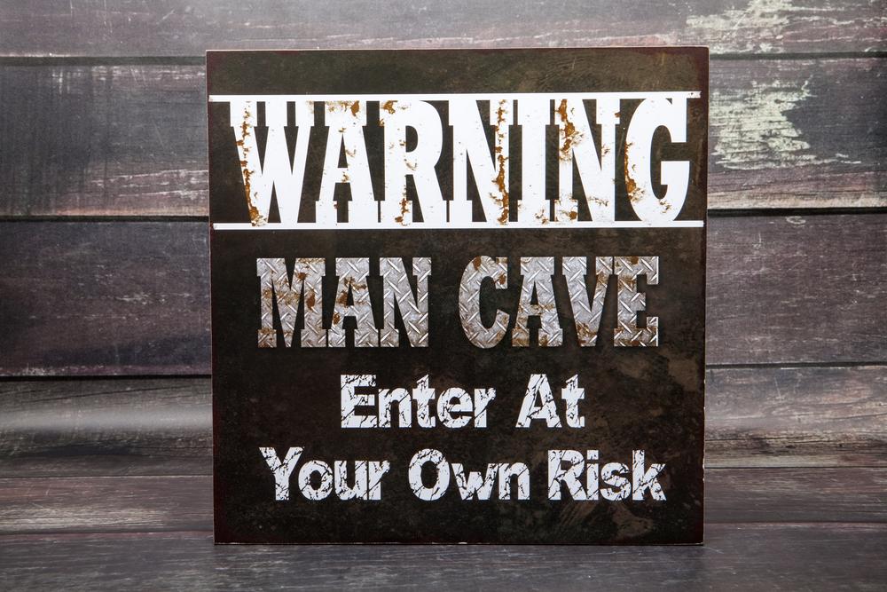 Envi Heater Man Cave Paintable