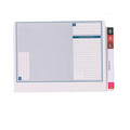 Avery Lateral Notes Standard File 46710