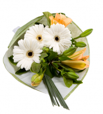 White gerberas hand tied bouquet arranged by sweden florists.