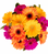 Hot colors bouquet., arranged gerberas hand tied for delivery in Sweden.