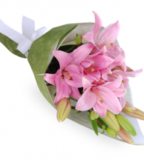 Pink lilies hand tied Sweden.