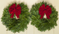 Down East Double Door Fresh Christmas Wreaths 15 in
