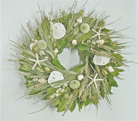 Santee Natural Seashell Wreath 22 in