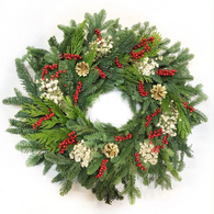 Festive Elegance Fresh Christmas Wreath 22 inch