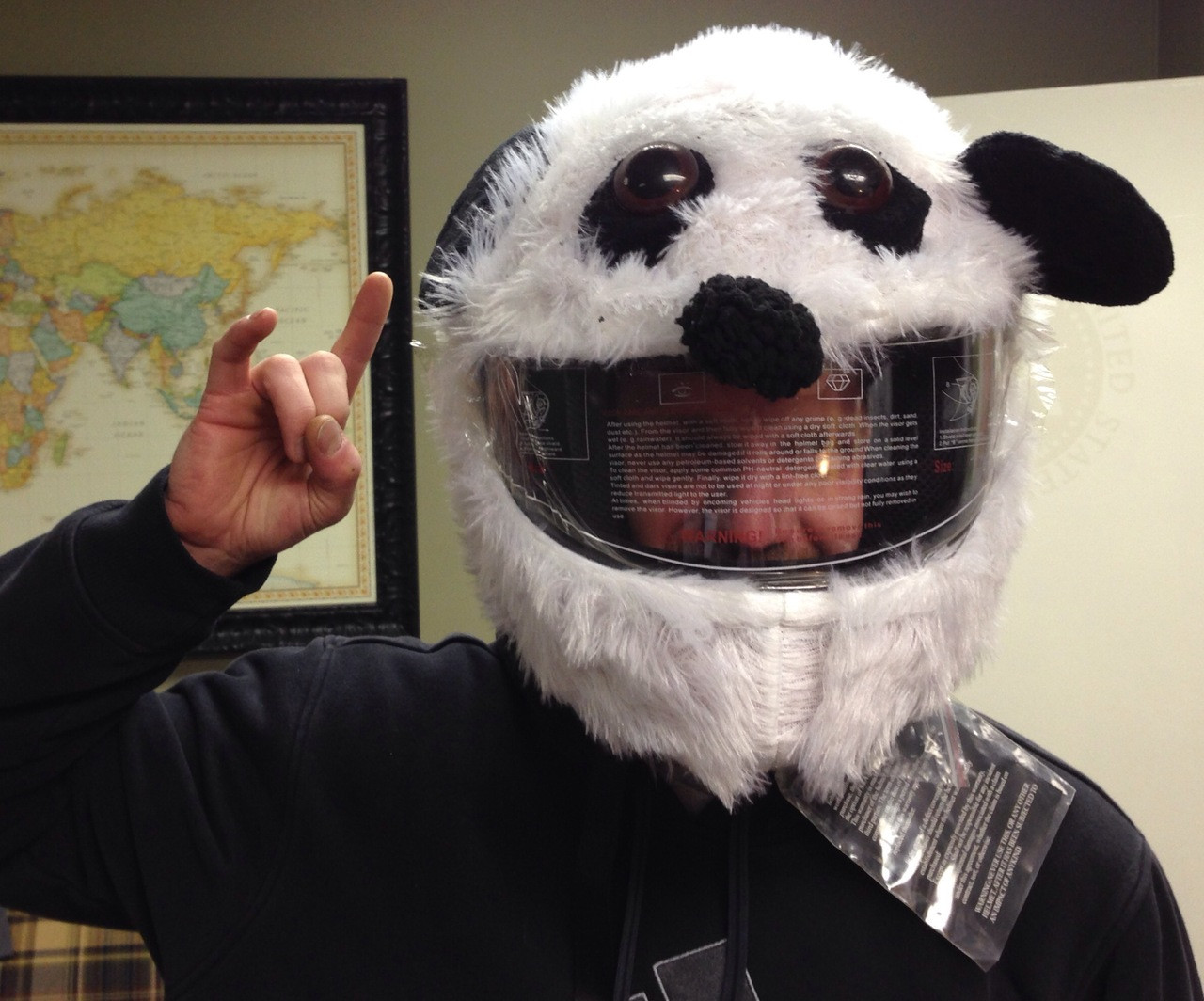 Panda Motorcycle Helmet Cover