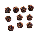 Rudraksha Beads, 10 mm, Set of 10 Beads