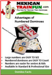 Dominoes with numbers