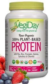 VegiDay Raw Organic Plant Based Protein Berry 927g
