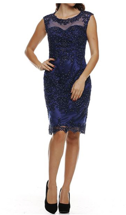 SHEER EMBROIDERY LACE PARTY DRESS - IMAGE 2