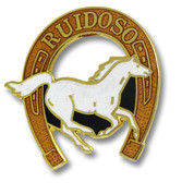 Ruidoso Horseshoe Ski Resort Pin