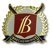 Breckenridge Cross Skis Ski Resort Pin