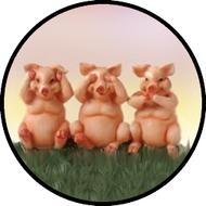 3 Little Pigs BR