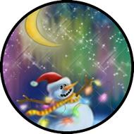 Aurora Snowman BR