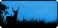 Hunters Dream Blue
