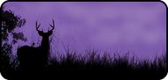 Hunters Dream Purple