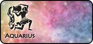 Solar Zodiac Aquarius
