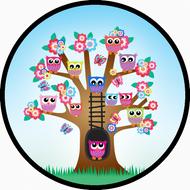 Owl Tree BR