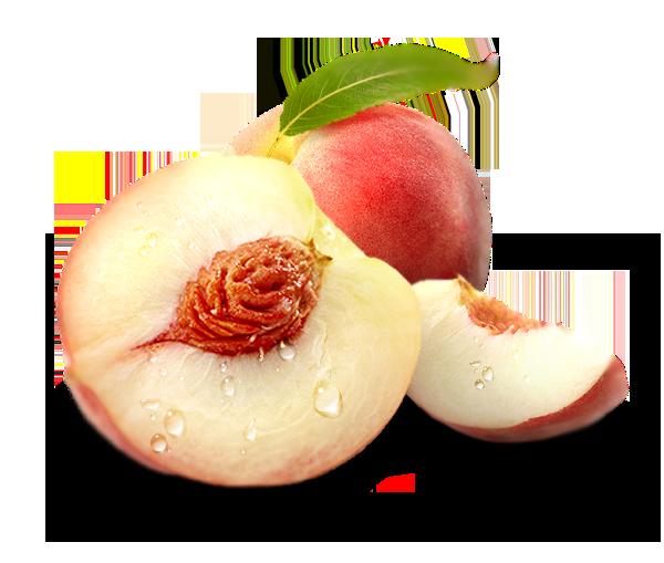FlavorTudes® - Flavor Shots! - White Peach