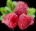 FlavorTudes® - Flavor Shots! - Raspberry