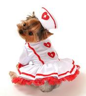 Cutie Nurse Costume