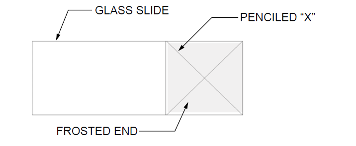 glass-slide-test.png