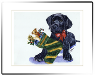 Small Matted Print | Lab