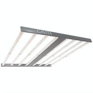 Gavita Pro 900e LED (120-277V) in Bulk (906461) UPC 849969034219