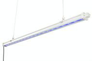 Gavita UVR LED (120-240 V) in Bulk (906425) UPC 10849969017974