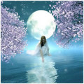 Lunar Intuition