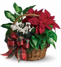 holiday baskets