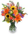 flower shop in abilene tx