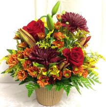fall flowers abilene