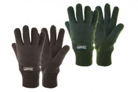 Drayton Thinsulate Gloves