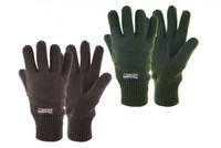Drayton Thinsulate Gloves