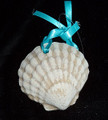 Scallop Shell Sand Ornament