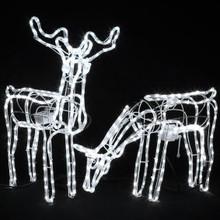 Set of 2 Animated 3D LED White Deer Couple Christmas Motif Rope Lights