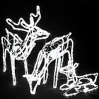 Set of 3 Animated LED 3D Deer Family Christmas Motif Rope Lights