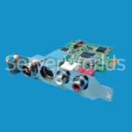 HP Avermedia TV Tuner LP Card w/Adapter 533420-001, H789AG