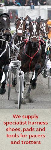 Harness racing horseshoes